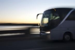Между Петербургом и Иматрой начинает ходить ежедневный автобус