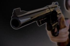 Депутат Госдумы вышел на трибуну с пистолетом