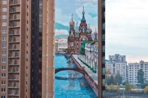 В Петербурге на доме нарисовали граффити высотой 50 метров
