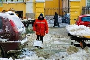 Полтавченко объявил, что Петербург полностью готов к зиме