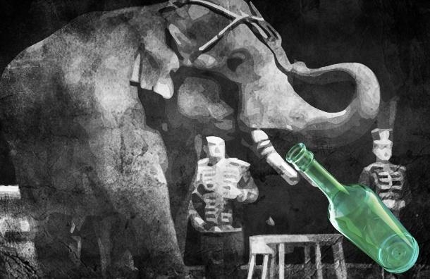 В Сибири цирковых слонов выгнали из горящего фургона на 40-градусный мороз, а потом отогревали водкой