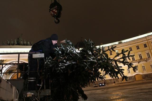 Новогодняя елка, Дворцовая 2012-2013: Фото