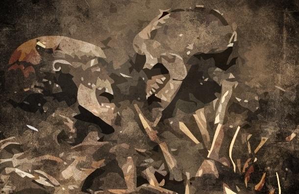 В поле под Петербургом экскаватор откопал скелет человека