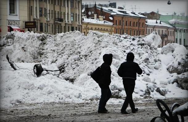 В Петербурге связанную девушку с кляпом нашли в сугробе