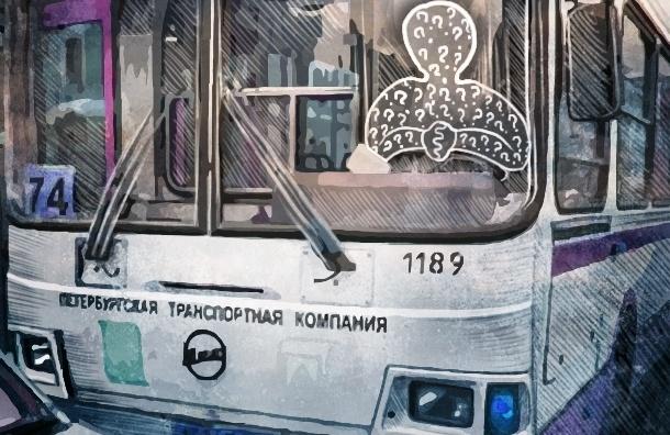 Дефицит водителей в Петербурге : русские не хотят, мигрантов мы не хотим