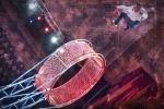 В петербургском цирке акробат сорвался с «Колеса смелости»