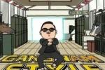 На Дворцовой площади несколько тысяч человек станцуют Gangnam Style