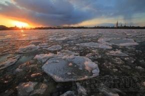 Лед закупорил течение Невы: уровень воды в Петербурге поднимается