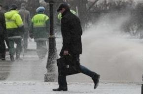 Жители Петербурга жалуются на неубранный снег в городе