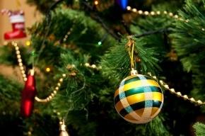 В Дагестане не будут запрещать Новый год