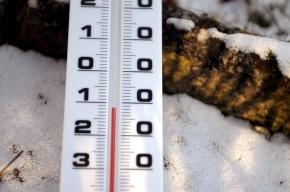 В Петербурге грядет резкое потепление, снегопады и метели