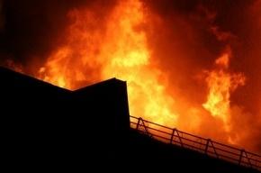 В крупном пожаре на проспекте Стачек погибли два человека