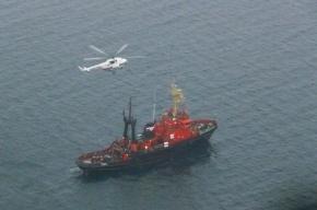 Чиновники объяснили, почему затонул сухогруз «Амурская»