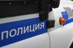 В Сестрорецке водитель «Тойоты» врезался в полицейский УАЗик