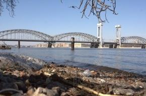 Вылетную магистраль с мостом через Неву спроектируют за 420 млн
