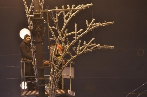 Прокуратура нашла нарушения при подготовке к Новому году в Купчино