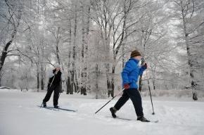 Двое лыжников провалились под лед в Петербурге
