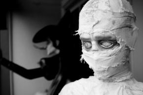В Петербурге в подвале дома нашли мумию