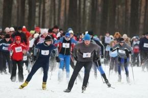 «Лыжные стрелы» начнут ходить из Петербурга с 5 января