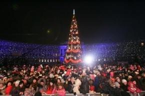 Новогодняя елка на Дворцовой появится в четверг
