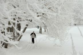 В Купчино откроют шесть лыжных трасс