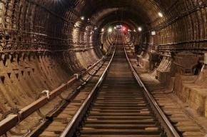 Станцию метро «Зоопарк» в Юнтолово построят, несмотря на отсутствие зоопарка