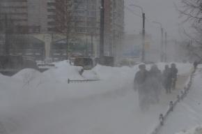МЧС: Петербург и Ленобласть ждут серьезные снегопады