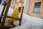 Дворы с игрушками: Фоторепортаж