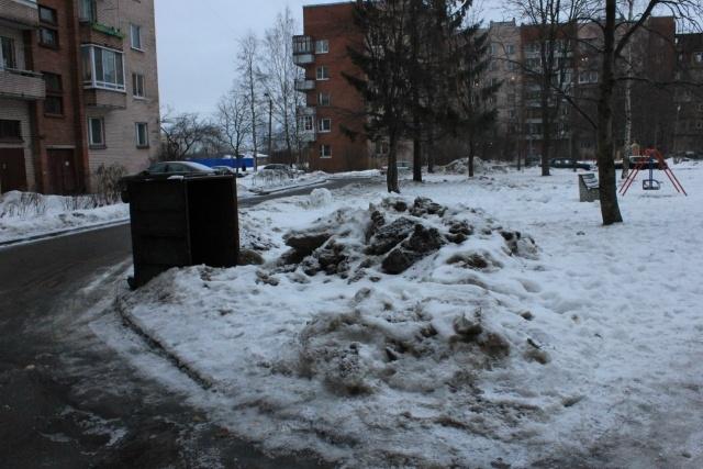 Красивый Петербург, фотопрогулка Петергоф, 5 января 2013: Фото