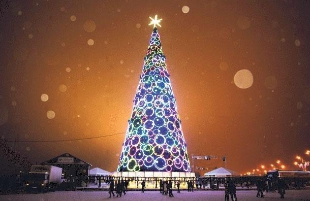 Московские городские елки стали дороже в три раза