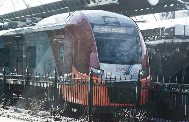 Скоростной поезд «Ласточка» впервые показали петербургским пассажирам (смотреть)