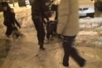 Зампрефекта округа Москвы и его сын арестованы за вымогательство взятки