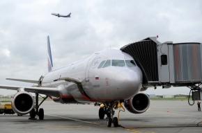 В московских аэропортах саперы ищут взрывчатку