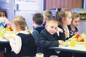 Кто и как теперь кормит наших детей в детсадах и школах
