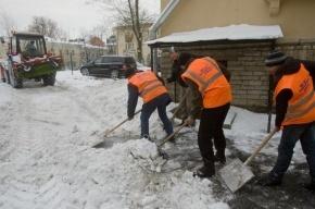 В Петербург в 2012 году легально приехало полтора миллиона мигрантов