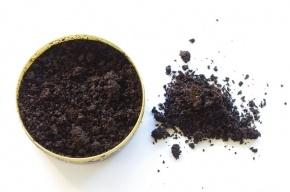 В России хотят запретить жевательный табак и «зеленую гадость» насвай