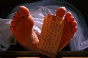 Вор пытался зарубить полицейского топором, но умер от болезни сердца