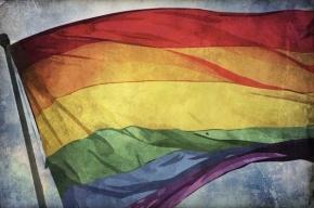 МВД предлагает запретить пропаганду гомосексуализма среди взрослых