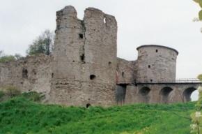 Рядом с древней крепостью Копорье сгорел дом, один человек погиб