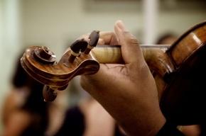 Филармония перенесет бесплатные концерты в Малый зал, чтобы вместить всех желающих