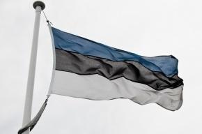 На Фонтанке открылся визовый центр Эстонии