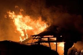 Мать с четырехлетней дочерью сгорели в пожаре на Будапештской