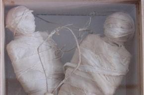 Петербуржец умер в своей квартире и превратился в мумию