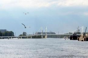 Петербургу придется заново проектировать мост через остров Серный