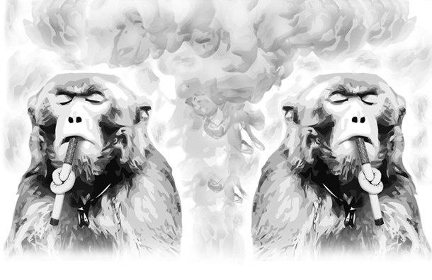 Госдума продолжит запрещать курение в России уже завтра