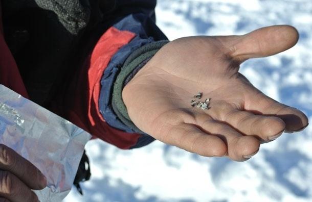 Первый фрагмент челябинского метеорита доставлен в столицу