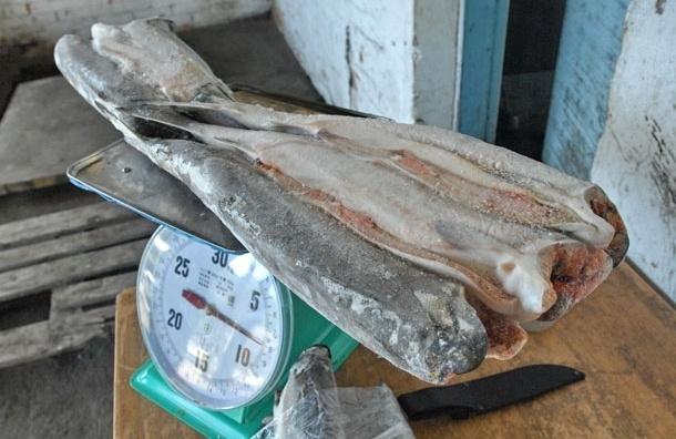 В Москве из грузовика украли 25 тонн мороженой рыбы