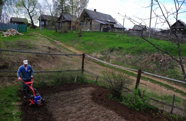 Изъятия садовых и дачных участков в