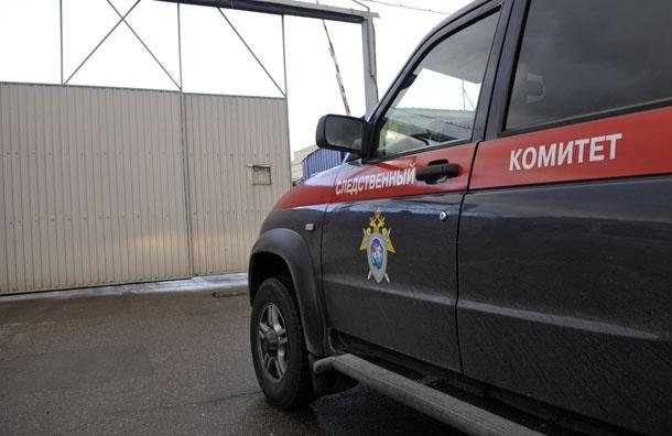 СКР возбудил дело об убийстве в США приемного ребенка из России
