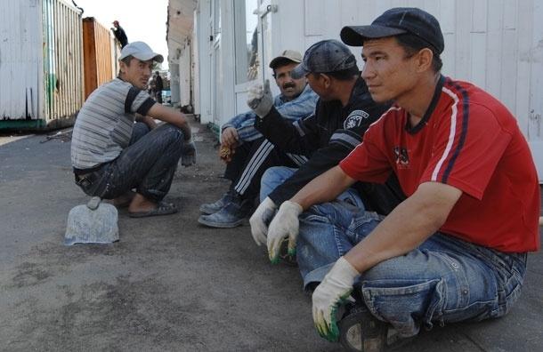 В Москве облава на дворников-мигрантов: задержано более сотни, каждого третьего выдворят из РФ